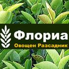 Овощен Разсадник ФЛОРИЯ - Вижте още