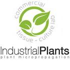 Индустриал плантс ООД - Вижте още