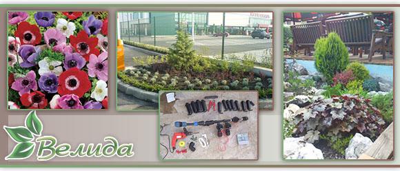 Велида - Лидия Делева ЕООД - Озеленяване, Посадъчен материал, Семена, Градински Център, Напоителни системи