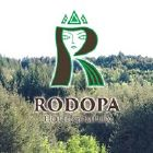 Hotel Rodopa - View more