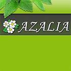 Градински Център Азалия - Вижте още