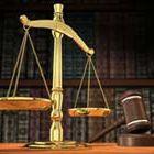 Адвокат Петя Колева - Вижте още