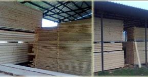 РОСИЦА 1996 ЕООД дървопреработване и изработване на изделия от иглолистен дървен материал като: ламперия, дюшеме, талпи, челни дъски, летви, куфраж