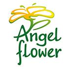 Ангелско цвете ЕООД - Вижте още